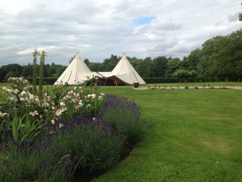 Love Tipis Dream Field
