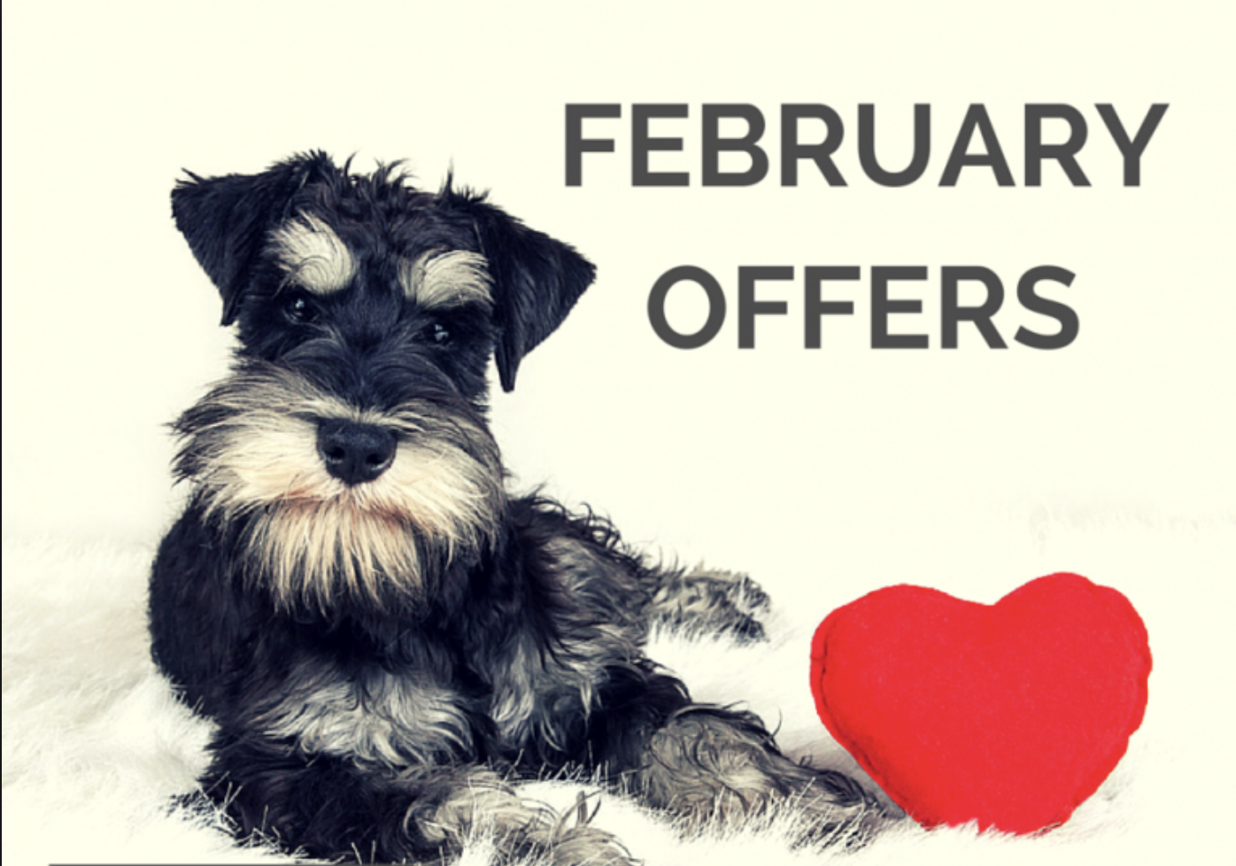 Love Tipis Feb Offers